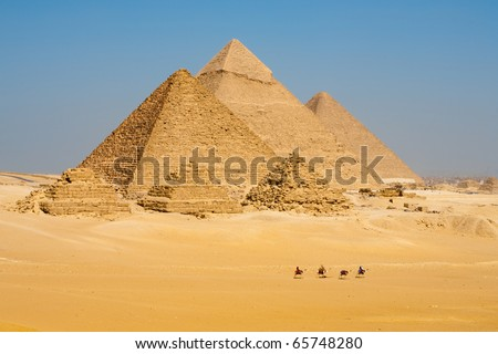 A distant view of a row of tourist camels walking in front of all of the Egyptian Giza Pyramids together in Cairo, Egypt. Horizontal copy space - stock photo