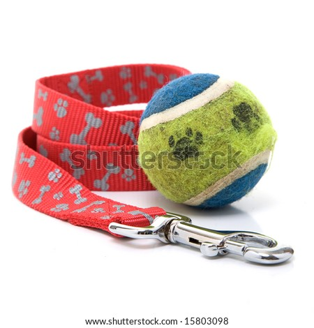 A dog leash and ball with paw prints - stock photo
