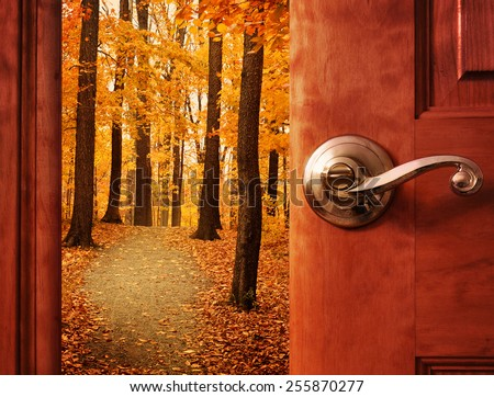 A door is opening into a beautiful forest with autumn leaves and a path trail with sunshine in the sky for an escape or dream concept. - stock photo
