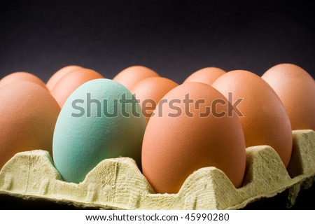 A dozen eggs in a carton, one is painted. Black background - stock photo