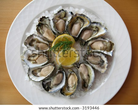 A dozen of fresh natural oysters presented on sea salt with slices of lemons and fennel. - stock photo