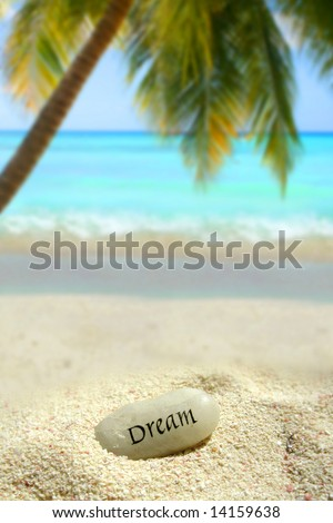 a dream stone in a sand mound on a tropical beach with palm tree and ocean in the background - stock photo