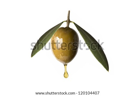 A drop of olive oil falling from one green olive isolated on a white background - stock photo