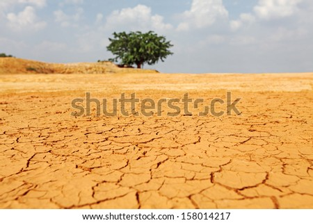 A drought stricken landscape of cracking earth surface.  - stock photo