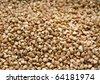 a dry buckweat macro - stock photo