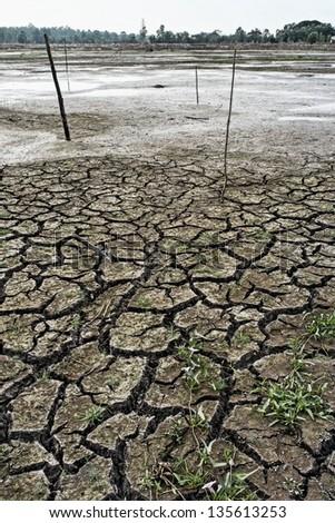 A dry lake - stock photo