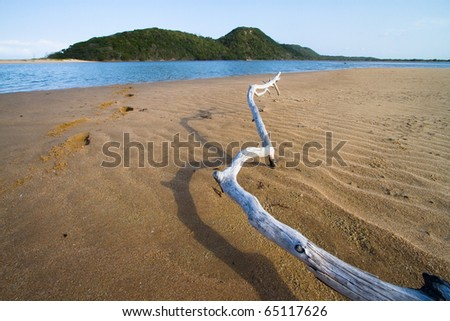 A dry log on the beach next to a lagoon - stock photo