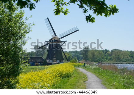 A dutch mill along a small river with yellow rapeseed in the foreground. - stock photo