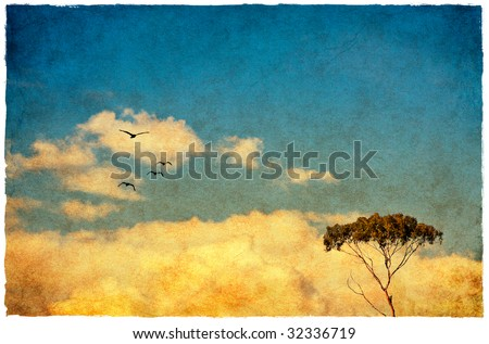A eucalyptus tree done in a vintage style with a heavy paper texture. - stock photo