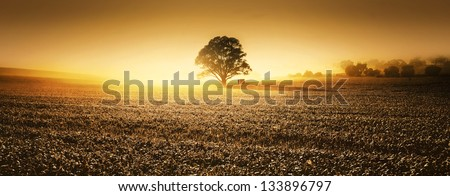 A farm in the Clare Valley, South Australia - stock photo