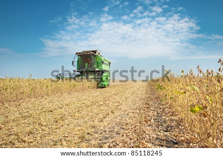 A farmer combines a field of soybeans - stock photo