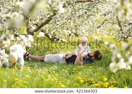 A Father is holding his baby girl on his lap as his two young boy children play under the flowering trees at an apple orchard on a spring day. - stock photo