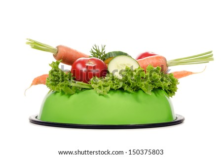a feeding bowl full of salad and vegetables before white background - stock photo