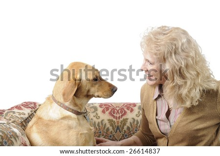 A female White Labrador dog looking quizzically as i's mistress is talking to it - stock photo