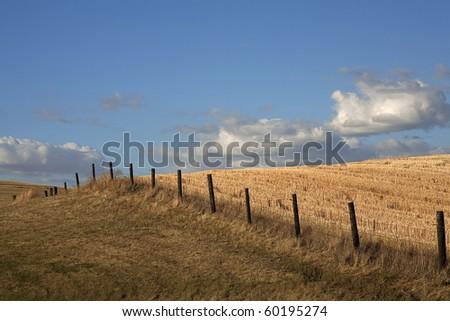 A fence line runs through a wide open farm field in the Palouse region of Washington. - stock photo
