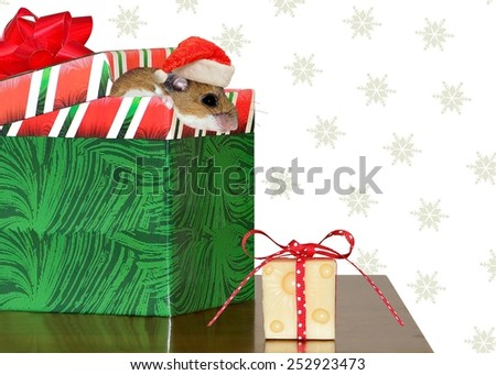 A festive Deer Mouse realizing that he got exactly what he wanted for Christmas! - stock photo