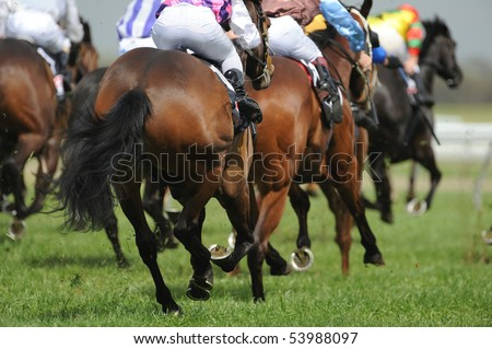 A field of horses and jockeys during a race. - stock photo