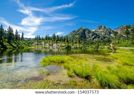 A Fir tree over majestic mountain lake in Bagley Lake Park, Mount Baker, Washington, USA. - stock photo