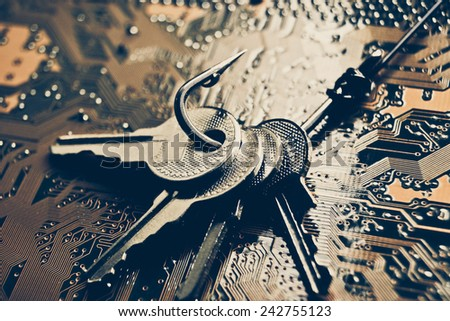 a fish hook with keys on computer circuit board / phishing / computer data theft concept - stock photo