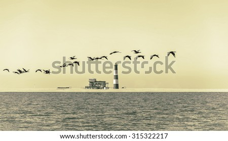 A flock of flamingos flying over the coast of the ocean in Namibia (Pelican Point lighthouse on background) (stylized retro) - stock photo