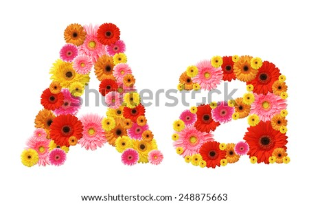 a, flower alphabet - stock photo