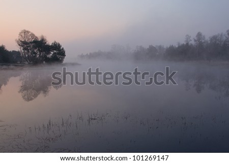 "A foggy sunrise on the ""Strabrechtse Heide"", a nature reserve near Eindhoven, the Netherlands. - stock photo"