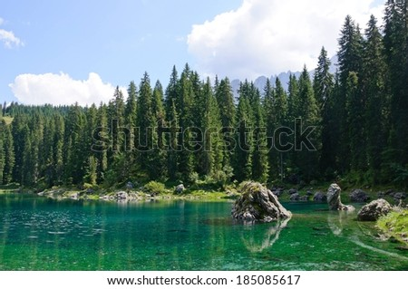 A forest with a lake and stones in it. - stock photo