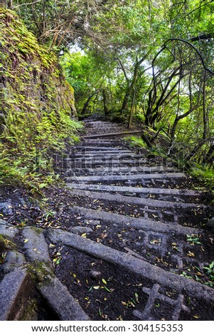 A four-mile wet, muddy trail with cinder block steps down a tropical Hawaiian mountain on Molokai leads to a small town of only a handful of residents and is the only access other than by sea. - stock photo