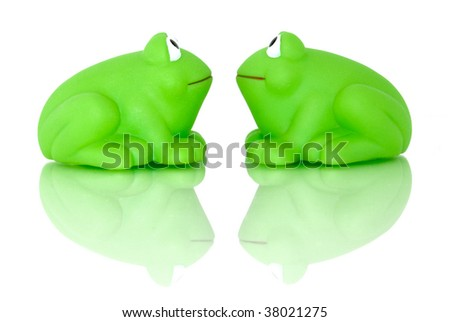 A frog couple look into each other eyes, reflectiong on their lives. Isolated on white and shot on glass for reflection and to enhance the scene. - stock photo