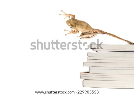 a frog is jumping over stack of book - stock photo