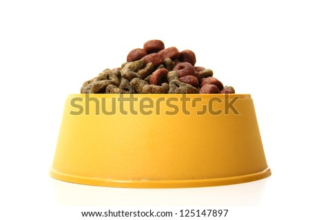A front view of an isolated dog bowl with dog food on a white background. - stock photo
