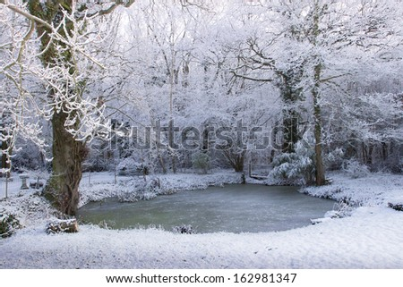 A frozen pond, on the edge of a wood, makes a beautiful Winter scene. - stock photo