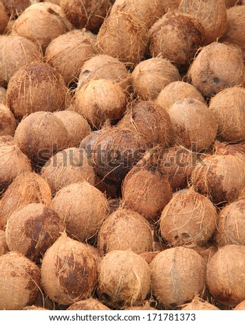 A Fun Fair Display of Coconuts for Sale. - stock photo