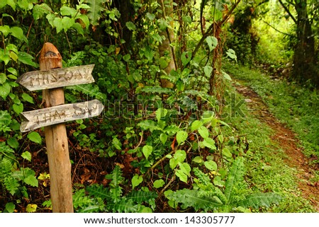 "A funny wooden garden sign reading ""This Way, That Way"", pointing down the path into the woods. - stock photo"