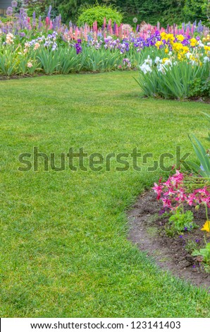 A garden scene with green lawn and blooming irises - stock photo