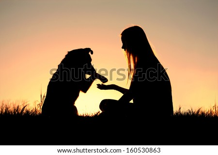 a girl is sitting outside in the grass, lovingly shaking hands with her German Shepherd dog, silhouetted against the sunsetting sky - stock photo