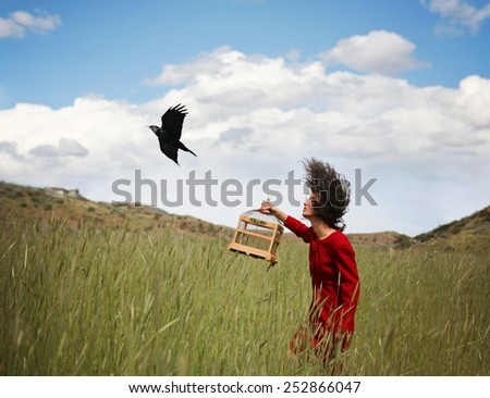 a girl walking in a wheat field on a warm summer day with a black bird - stock photo