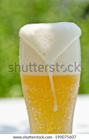 A glass is filled with beer and the bear foam is spilling from the top. - stock photo