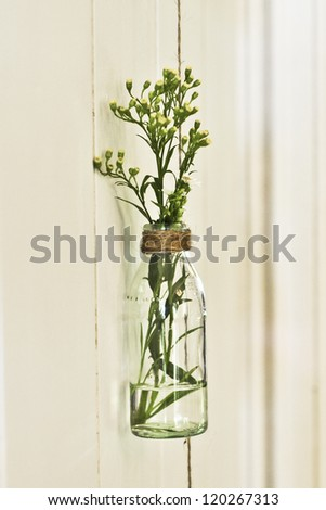 a glass jar is refashioned into a vase for fresh flowers - stock photo