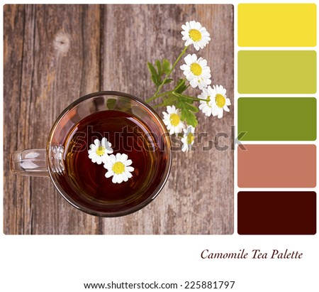 A glass of camomile tea, with camomile flowers, over old wood background. In a colour palette with complimentary colour swatches.  - stock photo