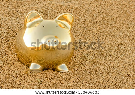 A gold piggy bank on a pile of wheat grain. - stock photo