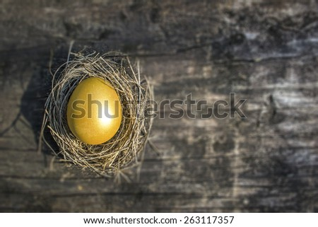 A golden egg opportunity concept of fortune and a chance to be rich: A golden egg in a nest on a blurred old wooden texture background: Chinese new year symbolic food of wealth richness money  - stock photo