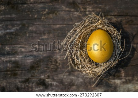 A golden egg opportunity concept of wealth and a chance to be rich : Golden egg in a nest on blurred grungy wooden background  - stock photo