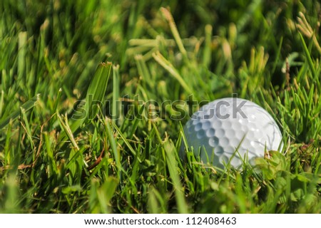A golf ball is half buried in deep green grass in the rough - stock photo