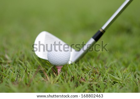 A golf club with golf ball on a golf course - stock photo
