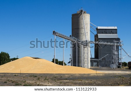 A grain storage facility with piles of grain on the ground - stock photo