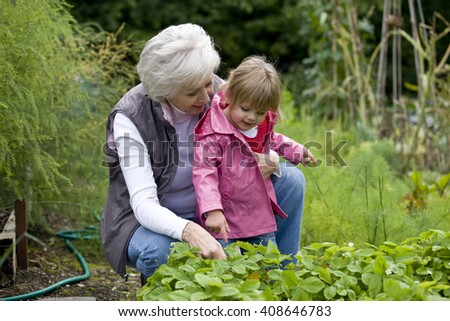 A grandmother and her granddaughter looking at strawberry plants - stock photo