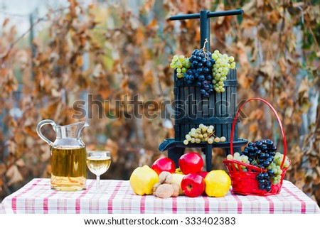A grape juice squeezer decorated with autumn fruits next to wine on a rustic table. - stock photo