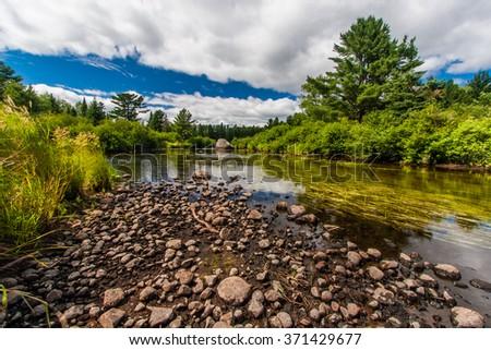 A grassy, rocky stream full of bass - stock photo