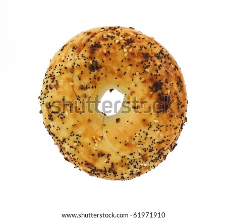 A great view of a well seasoned plain bagel. - stock photo